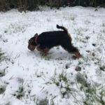 März 18 - mein erster Schnee