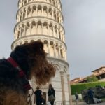 Juni 19 in Pisa - Italien